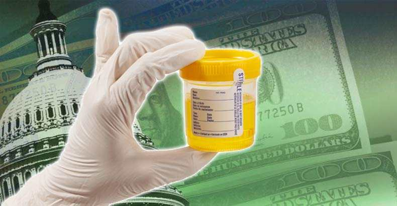 hidden costs of drug testing program