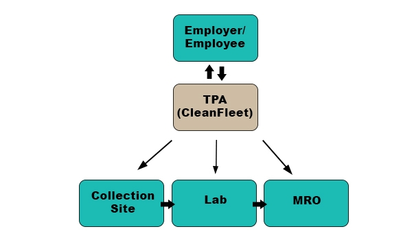 what a consortium tpa should do