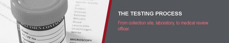 The Testing Process - CleanFleet